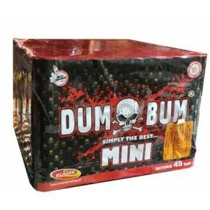 Dum Bum Mini 49s Klasek 6/1