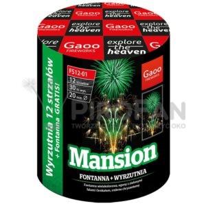 Mansion 12s Gaoo 24/1