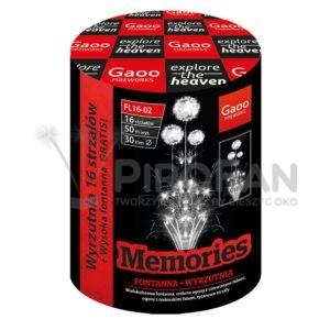 Memories 16s Gaoo 8/1