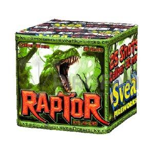 Raptor 25s Svea