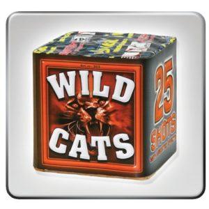 Wild Cats 25s SVEA